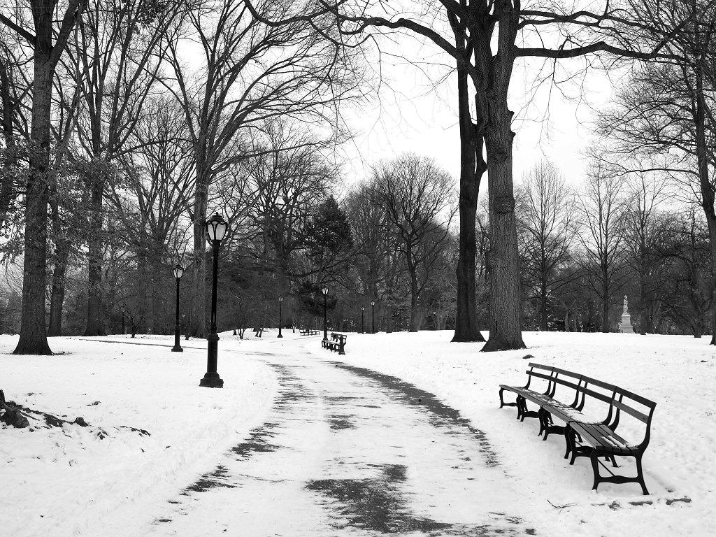 Reisekolumne Schnee in New York