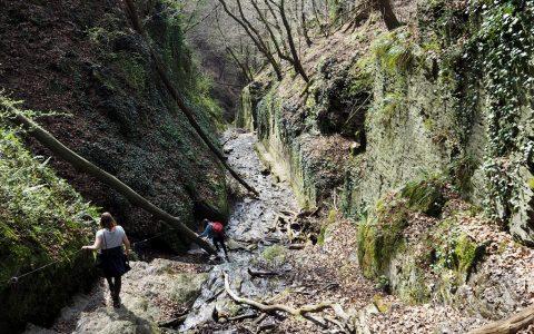 Wanderwege Rheinland Pfalz